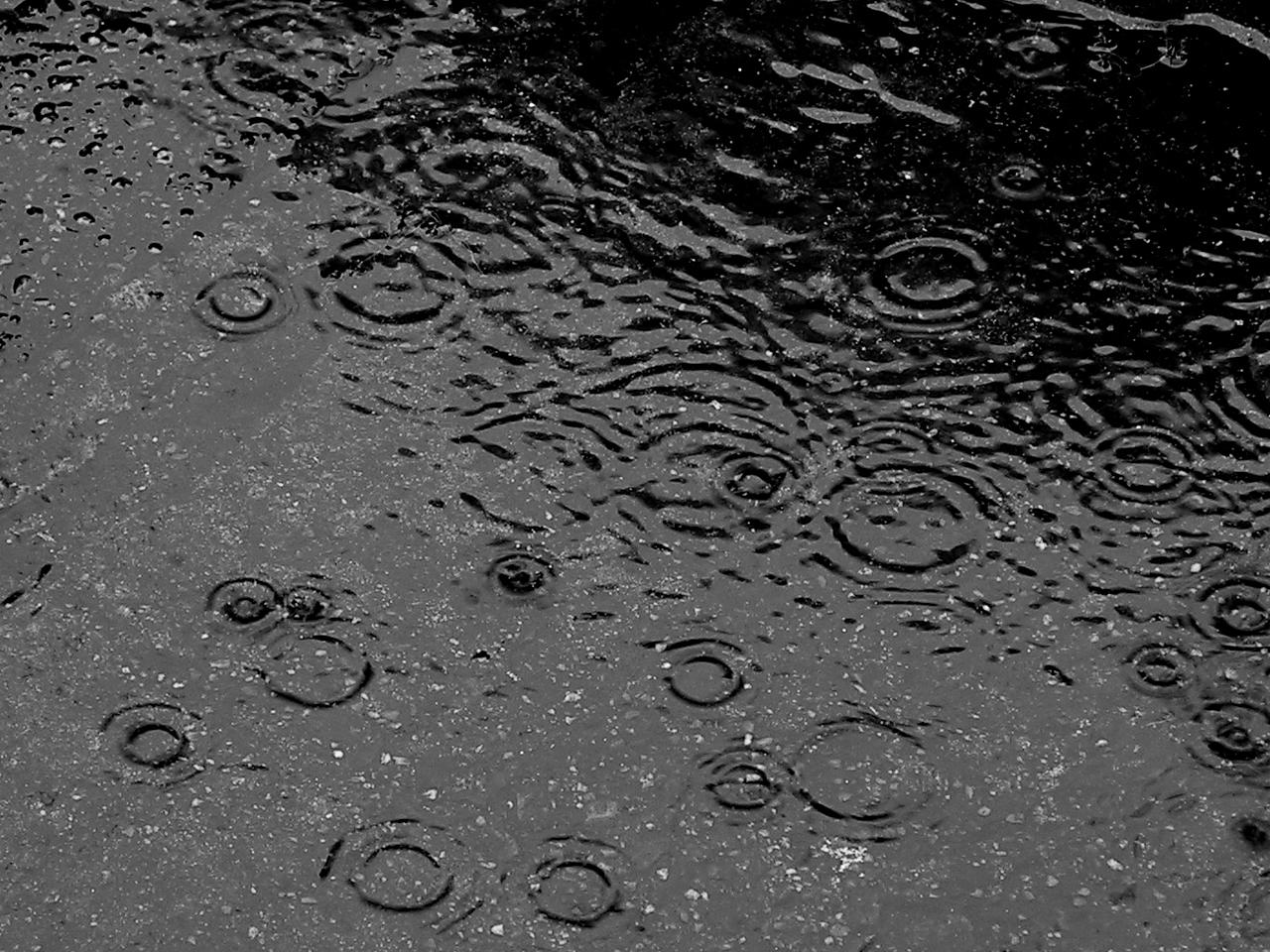 http://muslimsein.files.wordpress.com/2010/01/here_comes_rain_again1.jpg